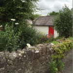 Beautiful Irish cottage garden with red door