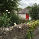 Beautiful Irish cottage garden with red door